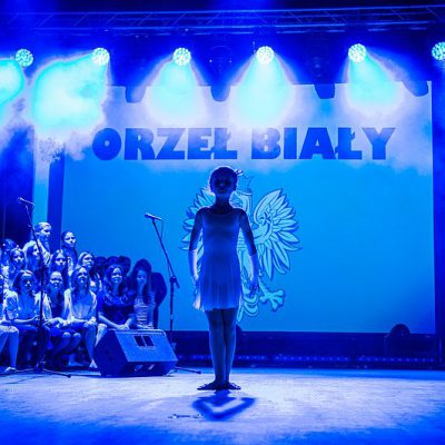 orzel_bialy43